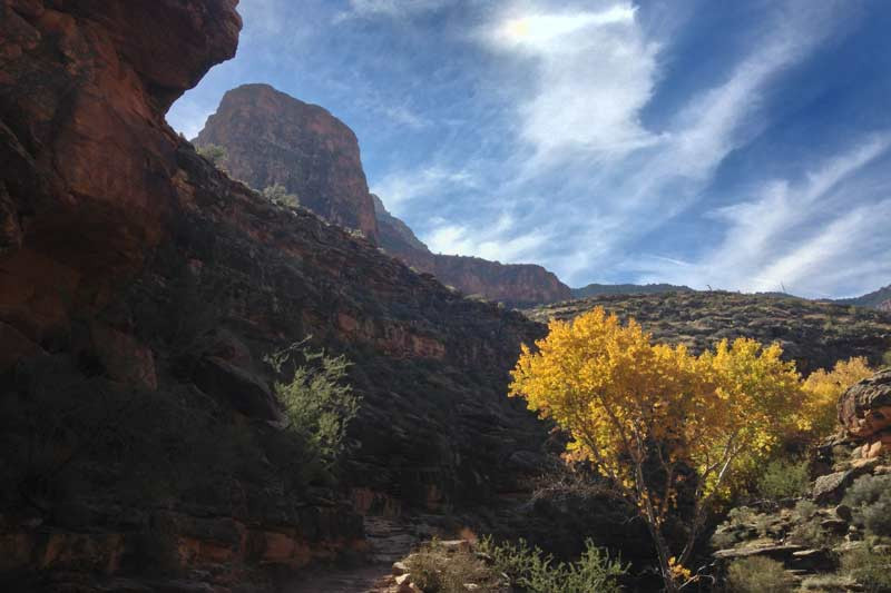 bright-angel-trail-through-tapeats-narrows-in-autumn